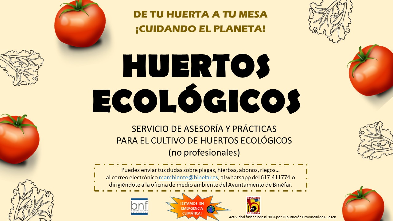 El Ayuntamiento ofrece asesoría gratuita sobre huertos ecológicos para aficionados