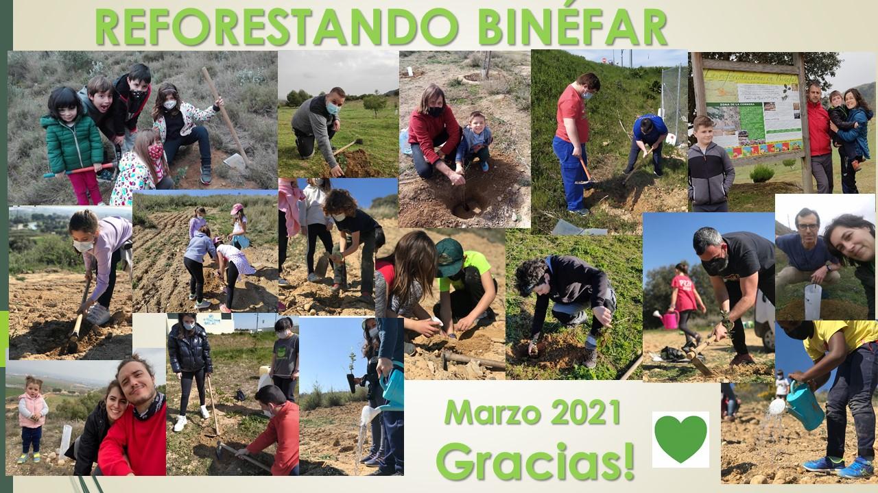 Más de 250 árboles plantados por voluntarios en los comunales de Binéfar