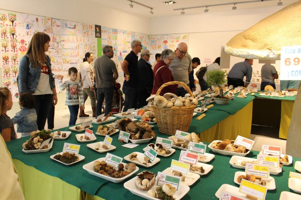 El Grupo Micológico de Binéfar logra exponer 203 variedades de setas
