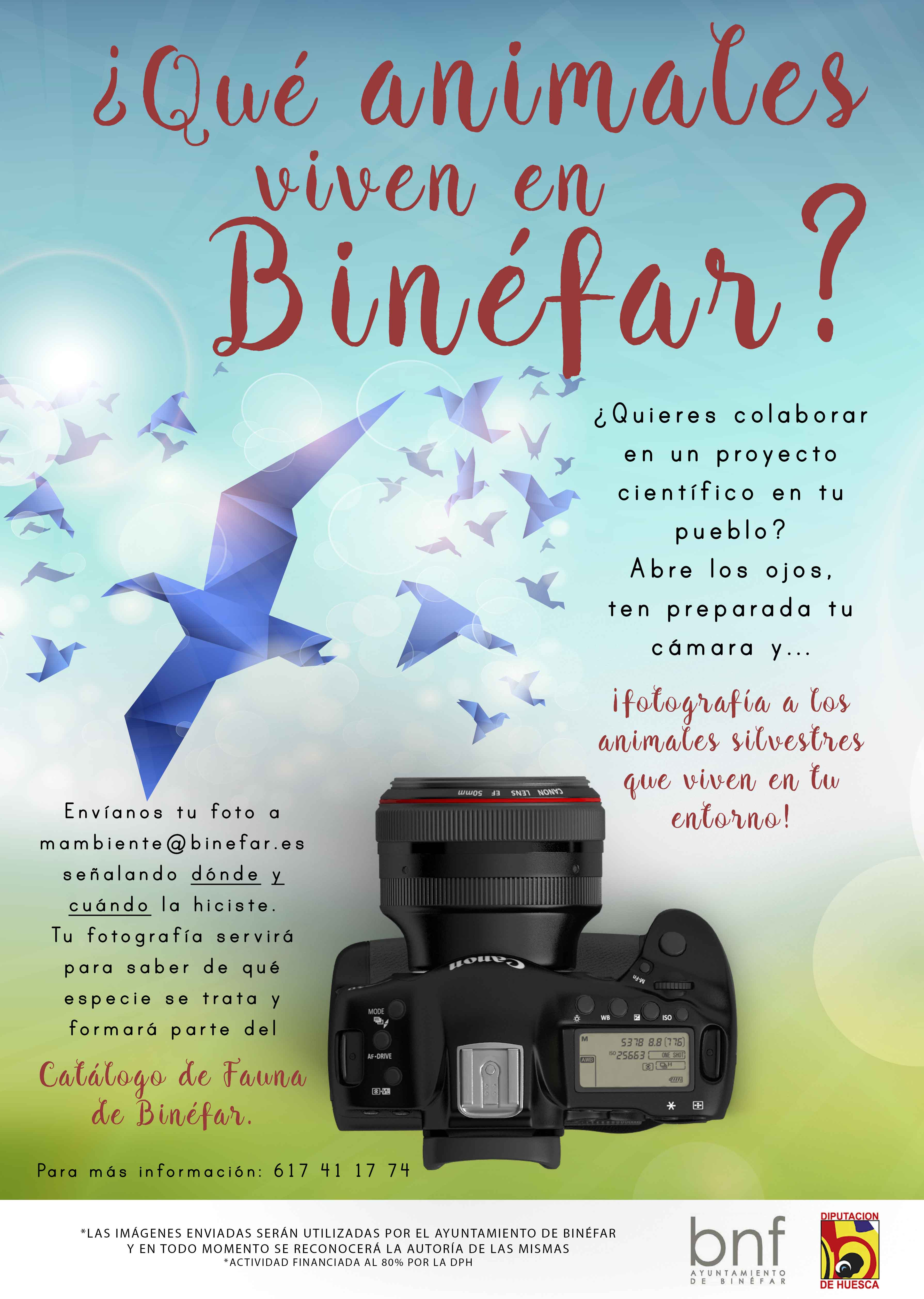 Ayuda en la elaboración de un catálogo de fauna de Binéfar