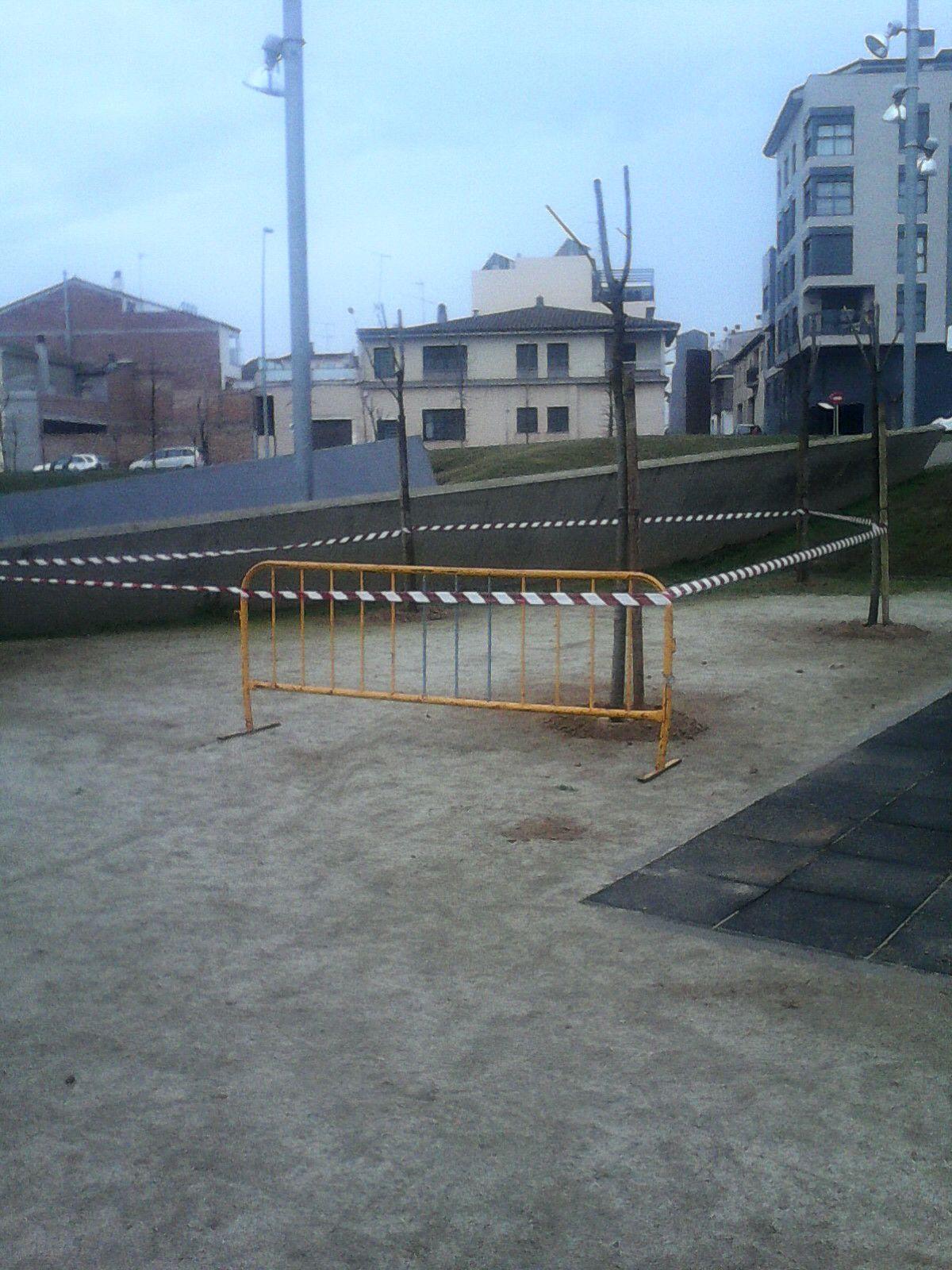 El Ayuntamiento planta árboles de sombra en el parque Benito Coll