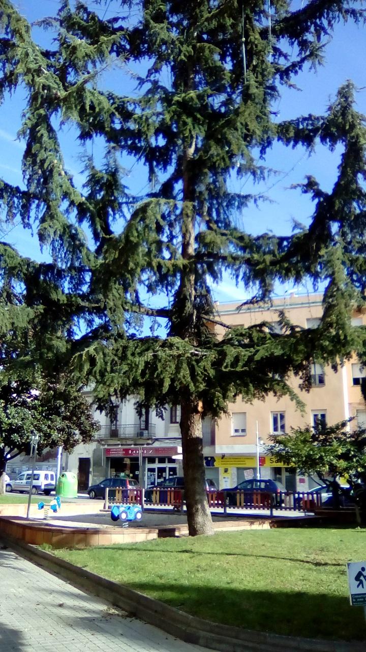 Plaza del Quesito